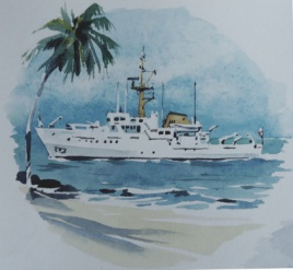 Bulldog Class Coastal Survey ship